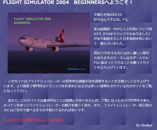Flght Simulator 2004 Bigginers