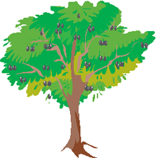 正常フラクタルの木